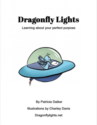 Dragonfly Lights Diabetes Book